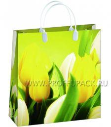 Сумочка из мягкого пластика 01 (26х23х10) малая BAS-105 (Желтые тюльпаны)