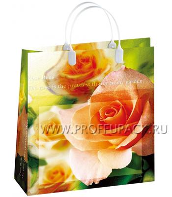 Сумочка из мягкого пластика 01 (26х23х10) малая BAS-54 (Чайные розы)