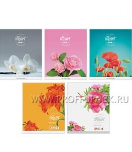 Тетрадь 80л Цветы (223-542 / Т80кВЛ_7804)