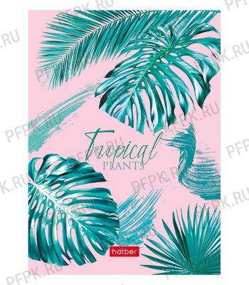 Блокнот А6 (160 листов) твердая обложка Тропические листья (288-861/160ББ6В1_22215)