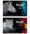 Альбом для рисования А4 (40 листов) Животные. Bright&black (280-665/А40_26252)