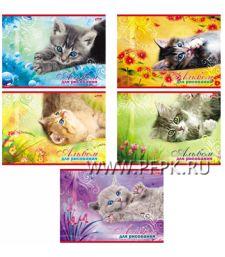 Альбом для рисования А4 (20 листов) Котята (097-715 / 20А4В)