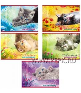 Альбом для рисования А4 (20 листов) Котята (097-715 / 20А4В_08527)