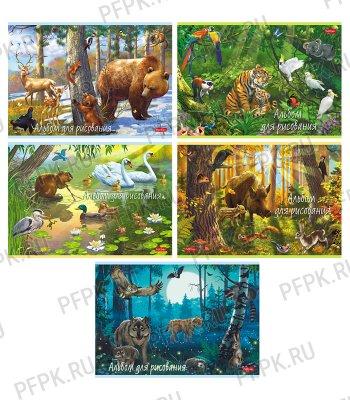 Альбом для рисования А4 (20 листов) В сказочном лесу (280-311/20А4В)