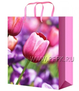 Сумочка бумажная 18х22х10 МЕГА (M) М-2244 (Цветы)