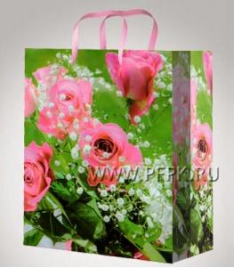 Сумочка бумажная 11х13х6 МЕГА (S) S-1073 (Цветы)