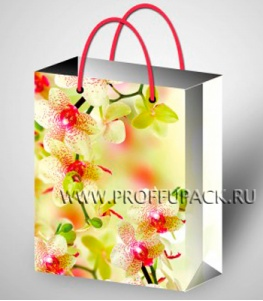 Сумочка бумажная 11х13х6 МЕГА (S) S-1007 (Цветы)