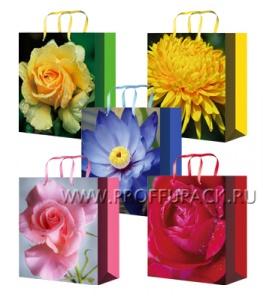 Сумочка бумажная 14х20х6,5 МЕГА (MS) MS-6092/6093/6094/6095/6096 (Цветы)