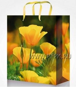 Сумочка бумажная 22х31х10 МЕГА (ML) ML-7118 (Цветы)