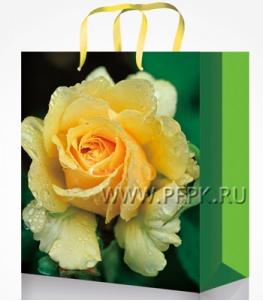Сумочка бумажная 22х31х10 МЕГА (ML) ML-7124(Цветы)