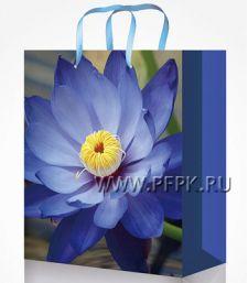 Сумочка бумажная 22х31х10 МЕГА (ML) ML-7123 (Цветы)