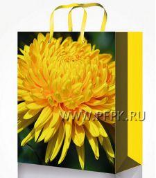 Сумочка бумажная 22х31х10 МЕГА (ML) ML-7125 (Цветы)