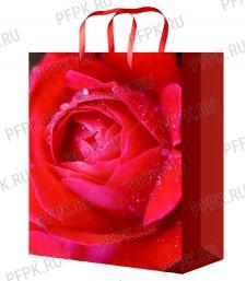 Сумочка бумажная 22х31х10 МЕГА (ML) ML-7122 (Цветы)
