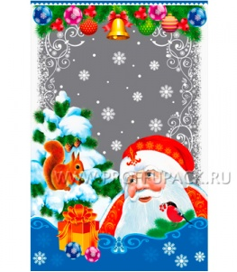 Пакет НГ прозр. с рис. + мет. 20х30 Дед Мороз (№5)