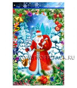 Пакет НГ прозр. с рис. + мет. 25х40 Дед Мороз (№12)