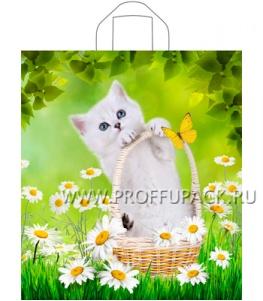 ПАРФЮМ 40х44+3 (43мкм) ПНД, ТИКО Весенний котик
