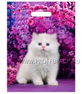 МАЛАХИТ, вырубная ручка, 31х40+3 (60мкм) ГЛЯНЕЦ, ТИКО Милый котик
