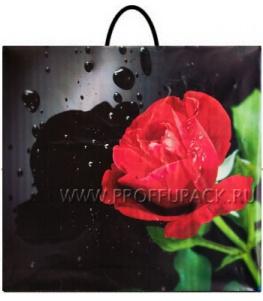 Пакет с пласт.руч. ФОТОПЕЧАТЬ 35х38 (100 мкм) РП. Роза на черном МКН-008