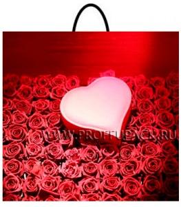 Пакет с пласт.руч. ФОТОПЕЧАТЬ 35х38 (100 мкм) РП. Розы и сердце МКН-007