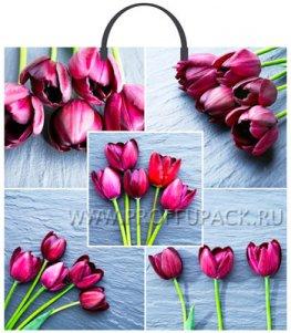 Пакет с пласт.руч. ФОТОПЕЧАТЬ 36х37 (100 мкм) ТИКО Коллаж-тюльпаны