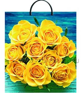Пакет с пласт.руч. ФОТОПЕЧАТЬ 36х37 (100 мкм) ТИКО Солнечное настроение