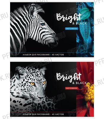 Альбом для рисования А4 (40 листов) Животные. Bright&black (280-665/А40_26252) [5/35]