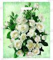 ЯНТАРЬ, вырубная ручка, 38х45+3 (60мкм) ламинат, ТИКО Белые розы [50/500]